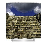 Jaguar Stairway Two Shower Curtain