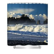 James Island Surf Shower Curtain