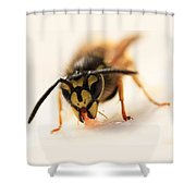 Jammy Wasp Shower Curtain