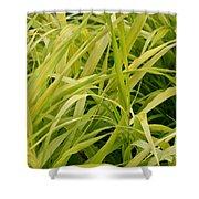 Japanese Forest Grass Shower Curtain