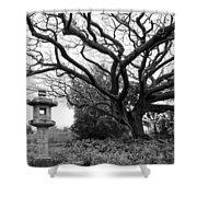 Japanese Lantern And Tree - Liliuokalani Park - Hilo Hawaii Shower Curtain