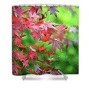 Japanese Maple Leaves Shower Curtain