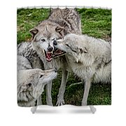 Jawing Shower Curtain