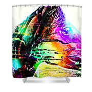 Jazzy Horse Shower Curtain