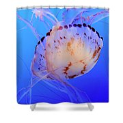 Jellyfish 5 Shower Curtain