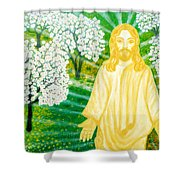 Jesus On Mount Thabor Shower Curtain