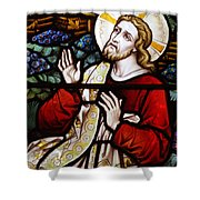 Jesus Stained Glass Shower Curtain