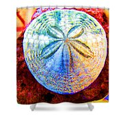 Jeweled Sand Dollar Shower Curtain