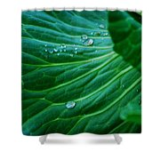 Jewels Of Water Shower Curtain
