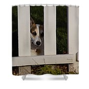 Johnny And The Picket Fence Shower Curtain