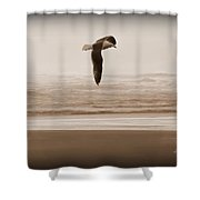 Jonathon Shower Curtain