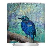 Josh's Blue Bird Shower Curtain