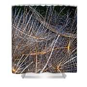 Journey Inward Shower Curtain