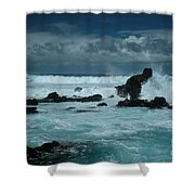 Journey Of Love Shower Curtain