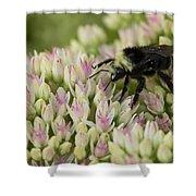 Joyous Bee Shower Curtain