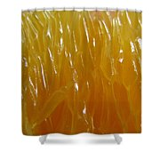 Juicy. Abstract Macro.  Shower Curtain