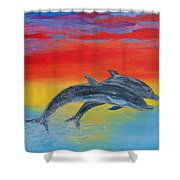 Jumping Dolphins Right Shower Curtain
