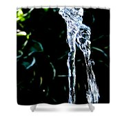Jumping Water Shower Curtain
