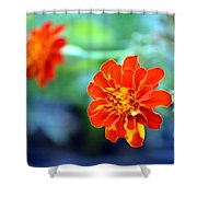 June's Bloom Shower Curtain