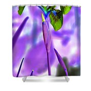 Jungle Iris Shower Curtain
