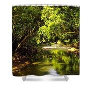 Jungle Stream Below The Secret Shower Curtain