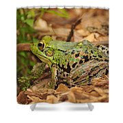 Just A Frog Shower Curtain