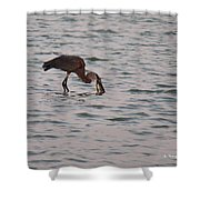 Just A Little Snack Shower Curtain