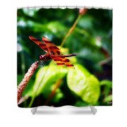 Just A Taste Of Nature Shower Curtain