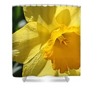 Just For The Frill Of It Shower Curtain