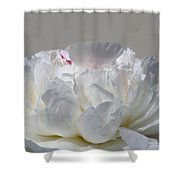 Just One Kiss Shower Curtain