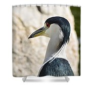 Just Over My Shoulder  Shower Curtain