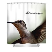 Just Wanted To Say.... Shower Curtain
