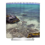 Kahena Rocks Shower Curtain
