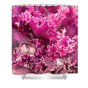 Kale Plant With Melting Snow Shower Curtain