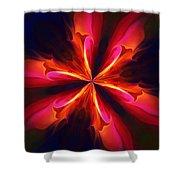 Kaliedoscope Flower 121011 Shower Curtain by David Lane