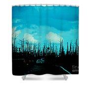 Katrina Trees Shower Curtain