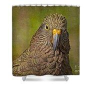 Kea Parrot Shower Curtain