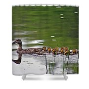 Keep Up Shower Curtain