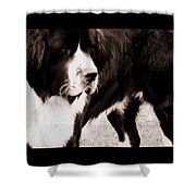 Keeper Of The Yard Shower Curtain
