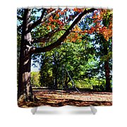 Kellifeer Park Shower Curtain