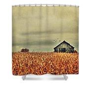 Kentucky Corn Field Shower Curtain