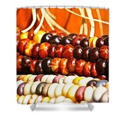Kernel Close Up Shower Curtain