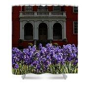 Kew Garden Irises Shower Curtain