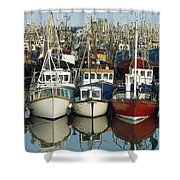 Kilkeel, Co Down, Ireland Rows Of Boats Shower Curtain