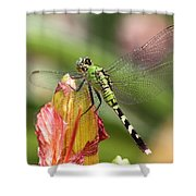 Killer In Green Shower Curtain