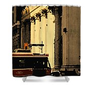 King Car Shower Curtain