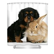 King Charles Spaniel And Rabbit Shower Curtain