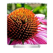 King Cone Shower Curtain