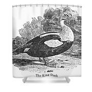 King Duck Shower Curtain