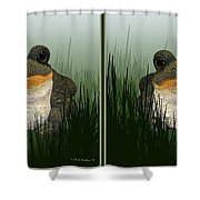 King Frog - Gently Cross Your Eyes And Focus On The Middle Image Shower Curtain